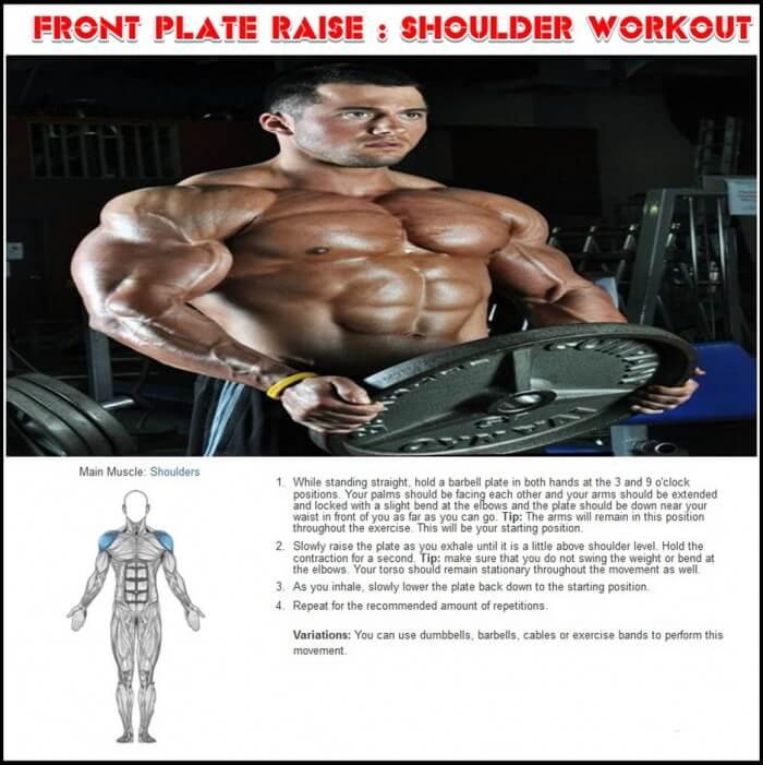 Front Plate Raise Shoulder Workout - Healthy Fitness Training Ab