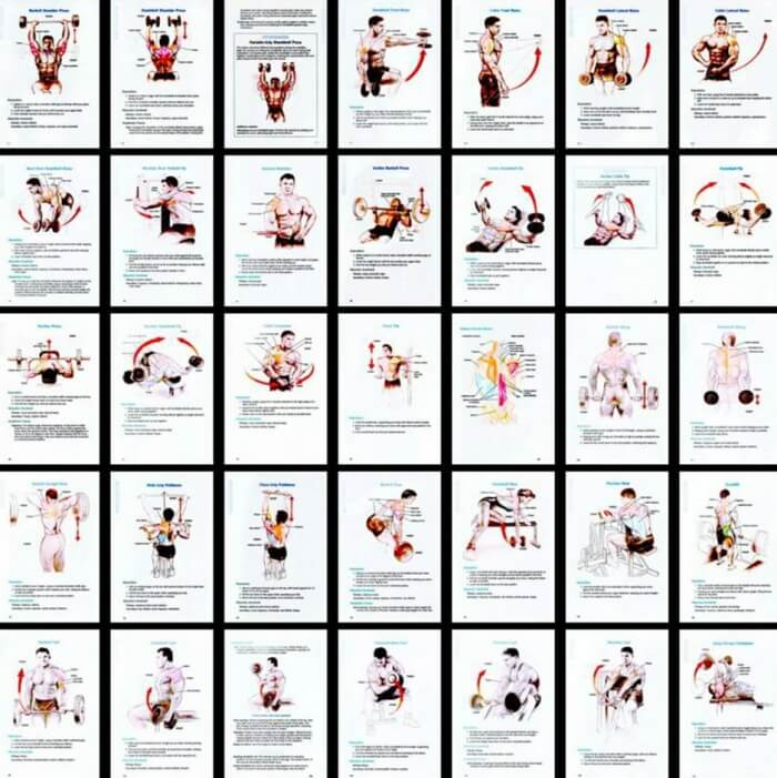 Body Exercises Chart - Healthy Fitness Training Routine Plan Abs