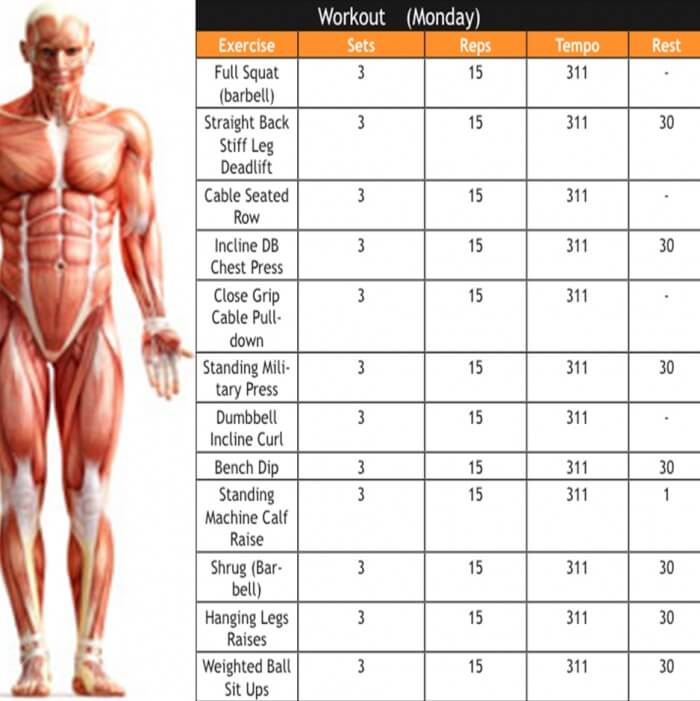 Workout Plan - Fitness Body Strong Health Workout Plan Legs Abs
