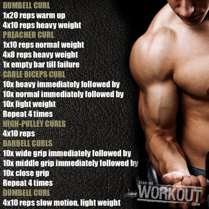 Stronger Biceps Workout - Health Fitness Training Plan Arms Curl