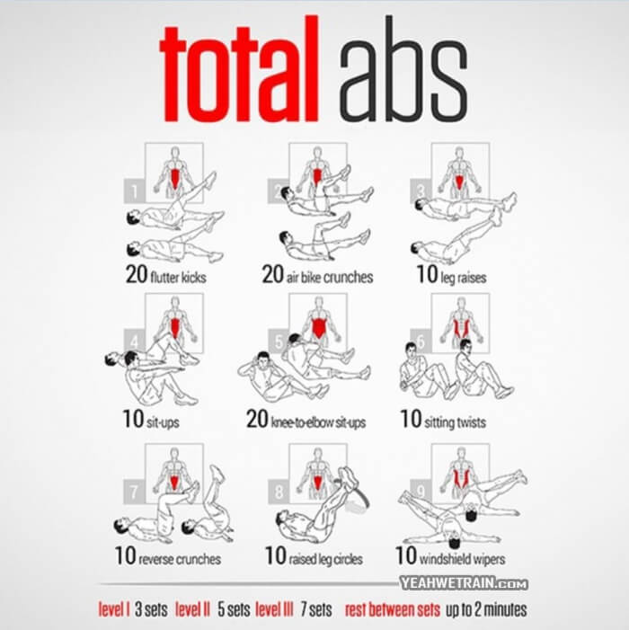 Total Abs Training - Healthy Fitness Abs Workout Plan Core Butt