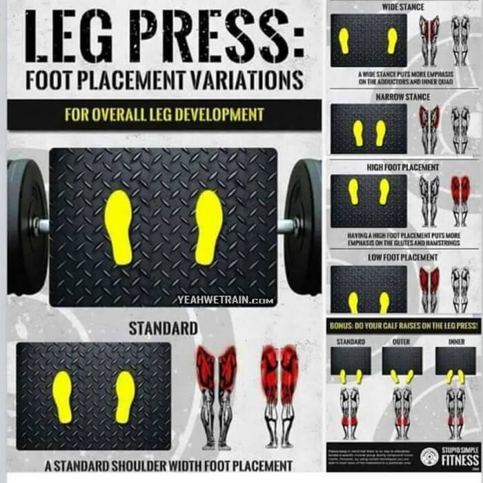 Leg Press Foot Placement Variations - Healthy Fitness Legs Butt