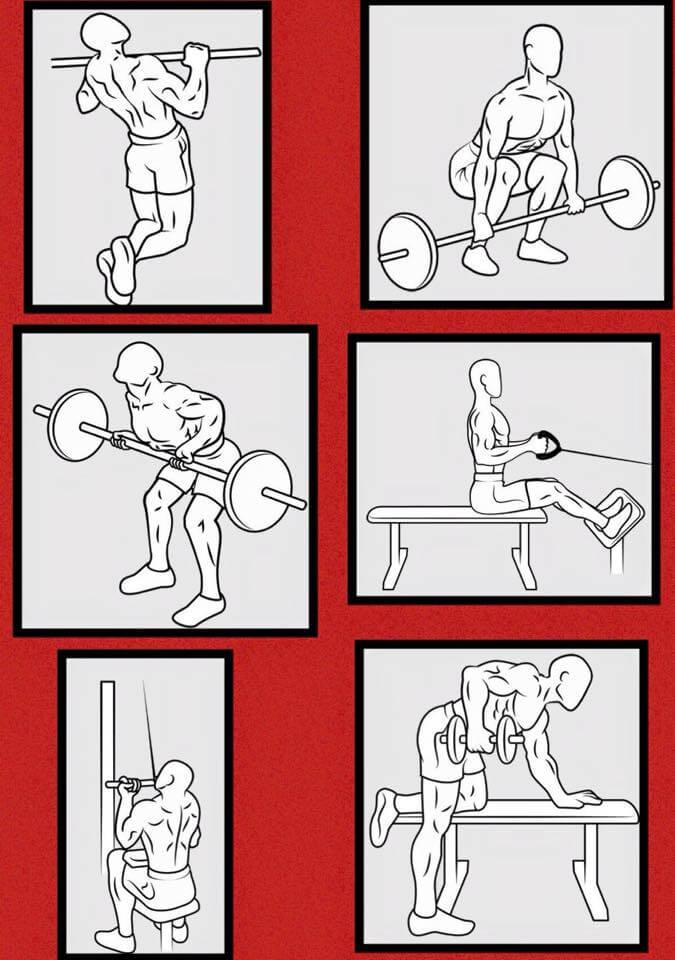 Best Back Exercises - Fitness Training Plan Full Body Healthy